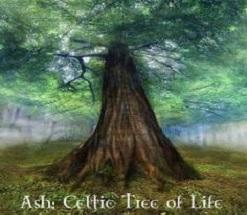 natalia tree 1